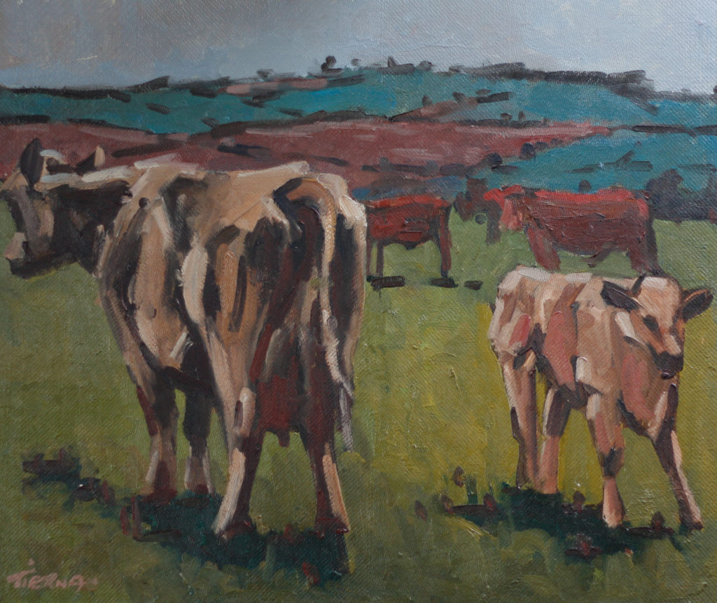 Brown Cows and Calf